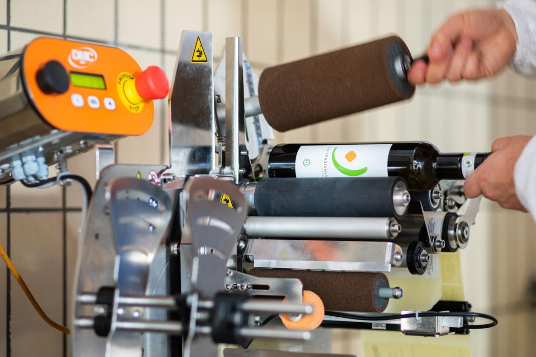 Etichettatura bottiglie di olio d'oliva